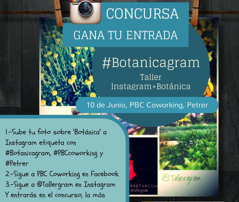 Fotografía móvil + Instagram + Botánica local en PBC Coworking